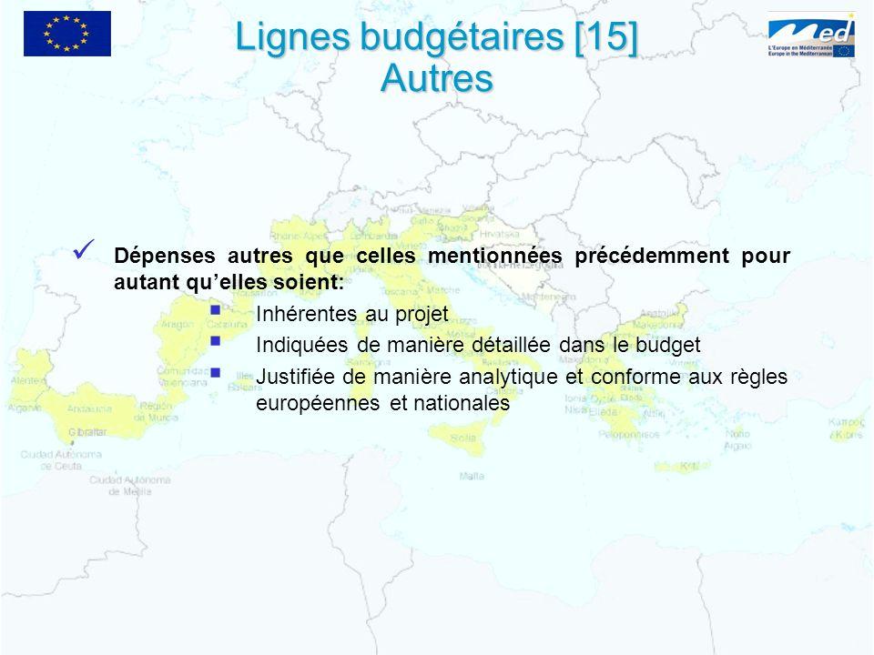 Lignes budgétaires [15] Autres